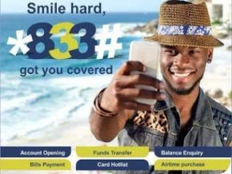 New Method to Use Skye Bank USSD Transfer Code and Short Code *833#