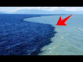 Photo Of Where Two Oceans Meet But Do Not Mix