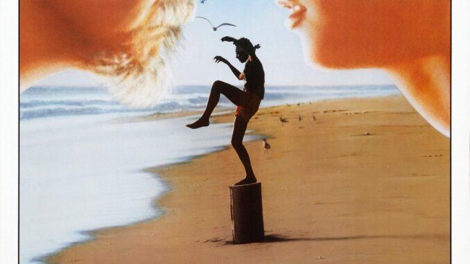Download The Karate Kid (1984)