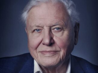 Download David Attenborough: A Life on Our Planet (2020)